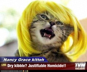 Nancy Grace kitteh - Dry kibble? Justifiable Homicide!!