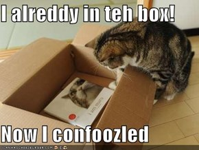 I alreddy in teh box!  Now I confoozled