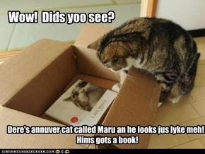Wow!  Dids yoo see?