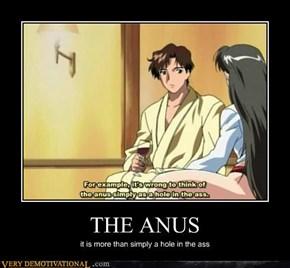 THE ANUS