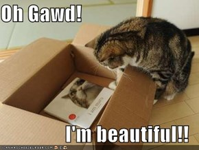 Oh Gawd!  I'm beautiful!!