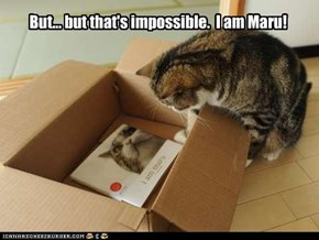 But... but that's impossible.  I am Maru!