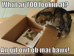 Whut ar YOO lookin at?  An git owt ob mai bawx!