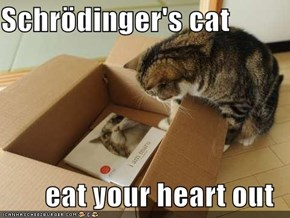Schrödinger's cat  eat your heart out