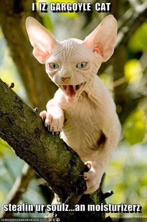 I  IZ  GARGOYLE  CAT  stealin ur soulz...an moisturizerz