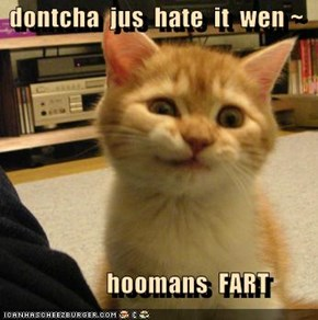 dontcha  jus  hate  it  wen ~                hoomans  FART