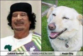 Colonel Gaddafi Totally Looks Like Happy Dog