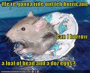 We're gonna ride out teh hurricane. Can I borrow  a loaf of bead and a doz eggs?