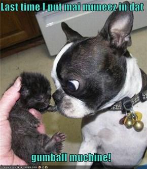 Last time I put mai muneez in dat  gumball muchine!