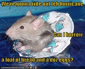 We're gonna ride out teh hurricane. Can I borrow   a loaf of bread and a doz eggs?