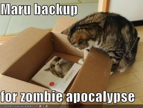 Maru backup  for zombie apocalypse