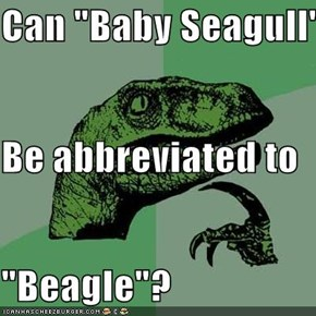 "Can ""Baby Seagull"" Be abbreviated to ""Beagle""?"