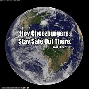 A message to all the Cheezburgers on the East Coast