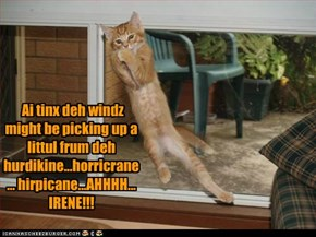 Ai tinx deh windz might be picking up a littul frum deh hurdikine...horricrane... hirpicane...AHHHH... IRENE!!!