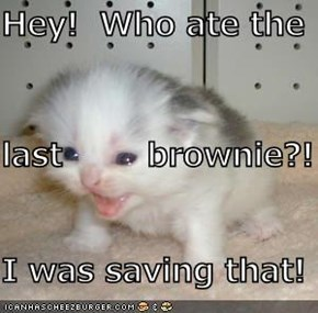 Hey!  Who ate the last        brownie?! I was saving that!
