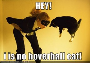 HEY!   i is no hoverball cat!