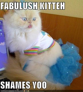 FABULUSH KITTEH  SHAMES YOO