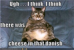 Ugh . . . I think, I think there was cheese in that danish