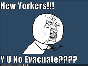 New Yorkers!!!  Y U No Evacuate????