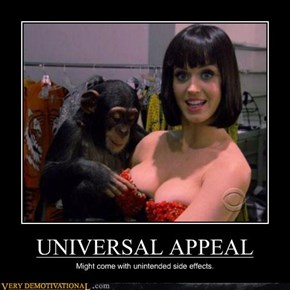 UNIVERSAL APPEAL