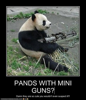 PANDS WITH MINI GUNS?