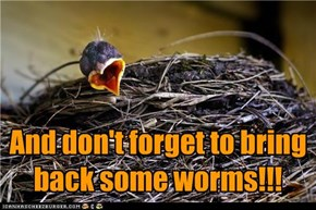 And don't forget to bring back some worms!!!