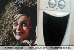 Bellatrix Lestrange Totally Looks Like This Washing machine.