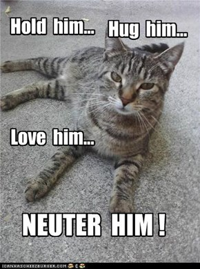Please spay or neuter you cats. If you think it costs too much...keep looking around. There are affordable vets out there!