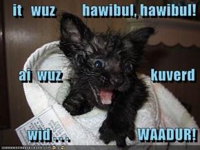 it   wuz         hawibul, hawibul!        ai  wuz                              kuverd          wid . . .                       WAADUR!