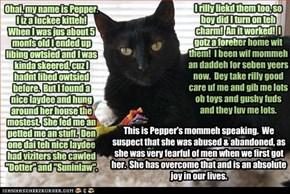 Pepper's Happee Story