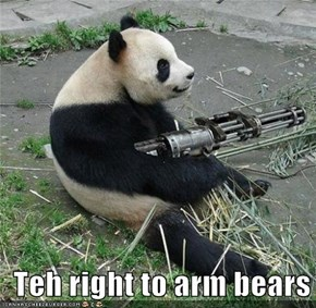 Teh right to arm bears