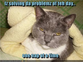 Iz solving da problemz of teh day..  one nap at a time