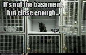It's not the basement,  but close enough...