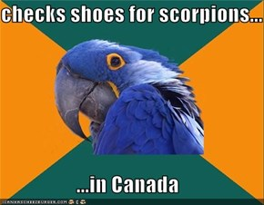 checks shoes for scorpions...  ...in Canada