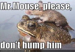 Mr.Mouse, please,  don't hump him