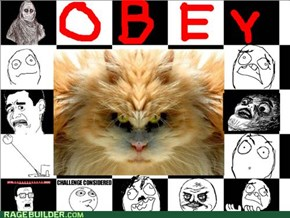 OBEY THE MOST FEARED!