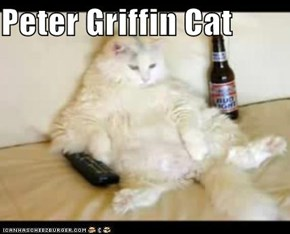 Peter Griffin Cat