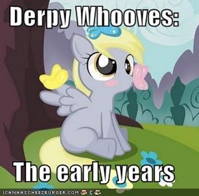 Derpy Whooves:  The early years