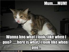 Mum......MUM!