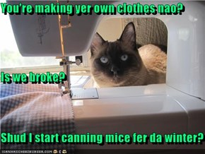 You're making yer own clothes nao? Is we broke? Shud I start canning mice fer da winter?