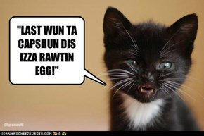 """""""LAST WUN TA CAPSHUN DIS IZZA RAWTIN EGG!"""""""