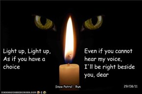 A Monday night candle for all the furbabies who wait at the bridge, and those who are suffering here on Earth - You are in our hearts and thoughts