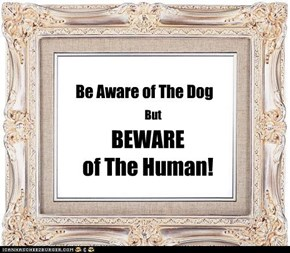 Be Aware of The Dog
