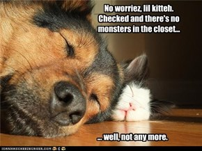 No worriez, lil kitteh. Checked and there's no monsters in the closet...