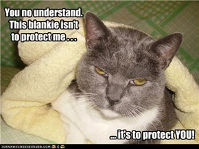 You no understand. This blankie isn't to protect me . . .