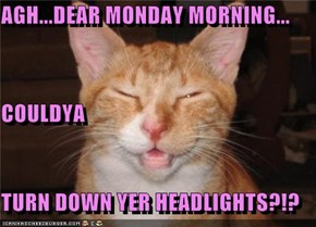 AGH...DEAR MONDAY MORNING... COULDYA TURN DOWN YER HEADLIGHTS?!?
