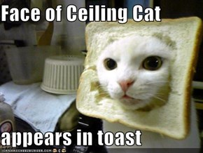 Face of Ceiling Cat  appears in toast