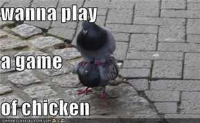 wanna play a game  of chicken