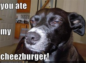 you ate  my cheezburger!