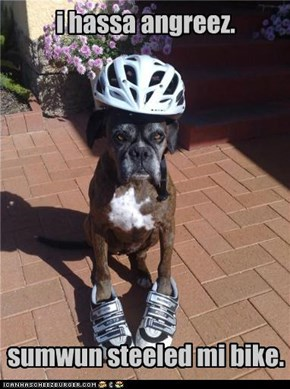 i hassa angreez.sumwun steeled mi bike.
